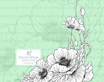 PNG Digital Stamp - Poppy - digistamp - Oriental Poppy -Beautiful Detailed Floral Line Art for Cards & Crafts by Mitzi Sato-Wiuff