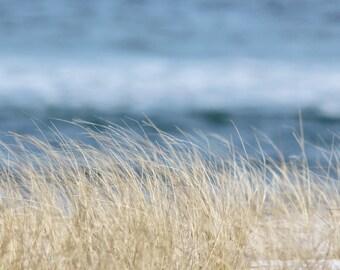 Beach Photograph, Coastal Wall Art, Beach Grass Photo, Ocean Decor, Sand Dune, Nautical Art, Seashore Print, Blue and Tan, Bedroom, Bathroom