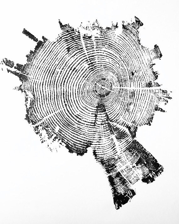 Real tree print, Yellowstone Park tree, Tree Ring Print, National Park Art, tree ring art print, Father's Day Gifts, Dendrology art gift