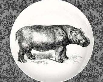 Hippo plate