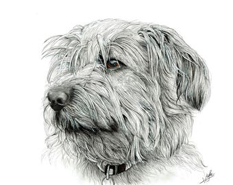 Personalized pet portraits. Custom Dog Drawing. Perfect for gift!