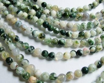 Tree agate - 6mm round beads -1 full strand - 66 beads - RFG121