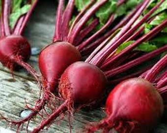 Sweet Beets 16oz - Like Eating Candy!!! - TheSunshineJellyCo