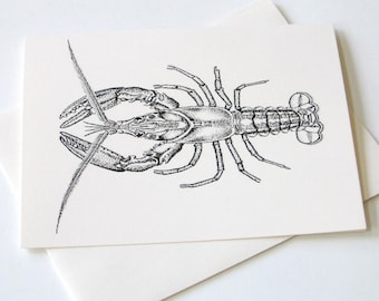 Lobster Note Card Set of 10