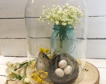 LOCAL PICKUP ONLY Large Glass Cloche; Display; Farmhouse Décor; Shabby Chic; Collectible Dome