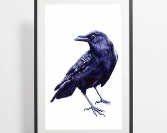 Watercolor Crow Painting Print – crow art, crow watercolor, crow illustration, bird illustration, crow poster, art print, bird art, animals