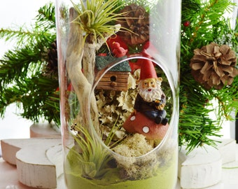 "Gnome Garden Terrarium Kit ~ 12"" Bullet Shape Air Plant Terrarium Kit ~ Moss ~ Driftwood ~ birdhouse ~ Miniature Gnome Kit ~ Gift Idea"