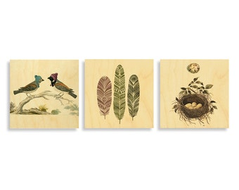 Prints on Wood, Bird art, modern art, wall art, bird lover prints, gifts for bird lovers