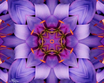 Purple Lilies Kaleidoscope Digital Art, Scanography Art, Digital Download, Digital File, Kaleidoscope, Day Lily, Day Lilies