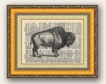 Bison Buffalo  8x10 Vintage Dictionary Page- Buy 2 get 1 FREE