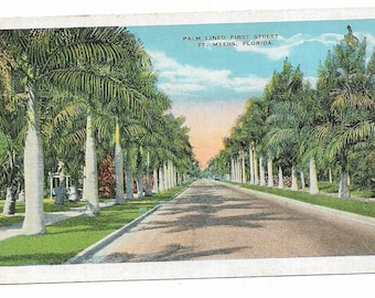 Vintage Florida Linen Postcard Fort Ft Myers Palm Lined First Street Royal Palms UNUSED