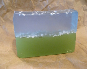 Swimming with the Fishes Soap Bar