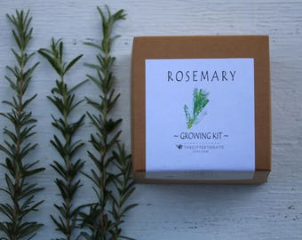 rosemary seeds garden kit, herb seed growing kit, dried rosemary, rosemary wreath, gift hostess gift, indoor herb garden, herb topiary