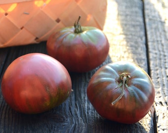 Black Krim Heirloom Tomato Seeds, Beefsteak Tomato, Great for Container Gardens and Salsa Gardens, Open Pollinated Vegetable Seeds Non GMO