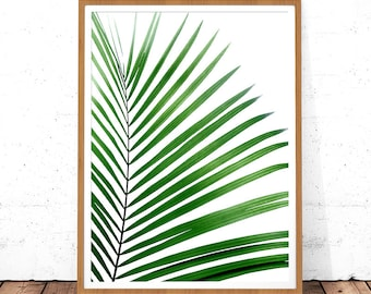 Palm Leaf Print, Leaf Print Download, Palm Printable Art, Digital Print, Tropical Leaf Print, Botanical Art, Palm Tree, Palm Leaf Decor