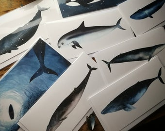 Bundle of 4 Sky Whale greetings cards
