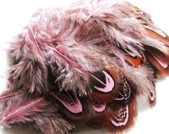 """Dyed Pink Ringneck Pheasant Almond Plumage Feathers 2-3""""