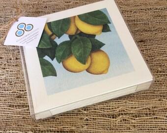 Arizona Citrus Notecard Mix - Set of 10 -  Oranges, Grapefruit and Lemons