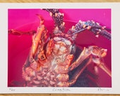 Limited edition Crayfish ...