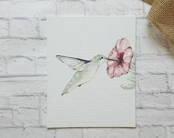 Hummingbird Painting, Hummingbird Art, Bird Painting, Bird Watcher, Animal Painting