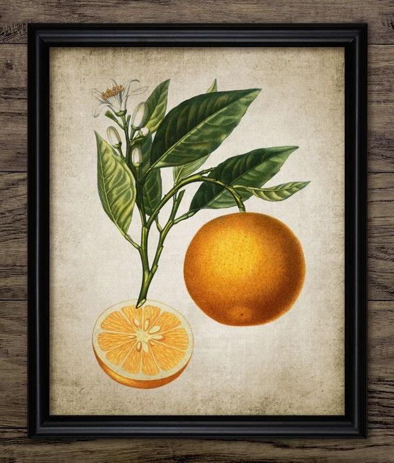 Orange Print