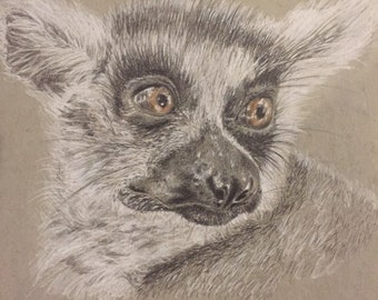 Original Lemur Art Portrait