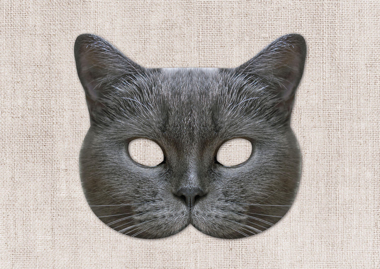 Scottish Gray Cat Printable Mask Cat Photo-Real Cat Mask
