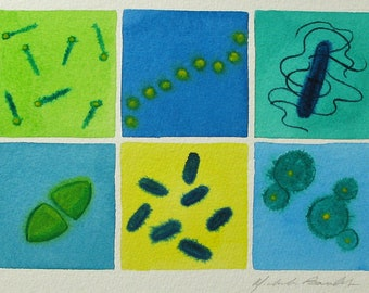 Blue and Green Microbes - original watercolor painting of bacteria