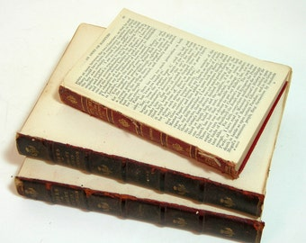 Antique Books - Rustic Home Decor - Naked Books