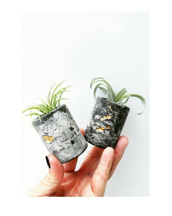 Concrete Gold Leafing Air Planter,Modern Metallic planter,Cactus Decor, Succulent Planter, Indoor Planter,Concrete Home Decor