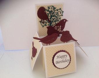 Beautiful Handmade Birds themed pop up box card