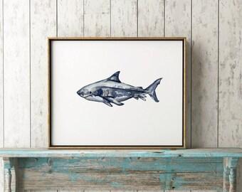 Great White 101, Shark Print, Watercolor Painting, Illustration, Shark Art, Shark Decor, Shark Wall Art, Shark Watercolor, Shark Illustratio