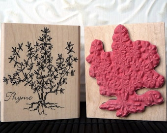 Thyme herb plant rubber stamp from oldislandstamps