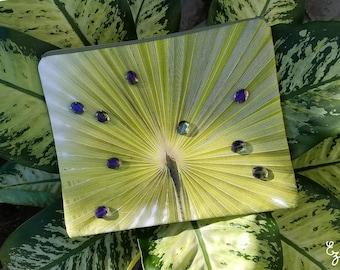 Dewy Palm Tree - Photo Print Beaded Bag