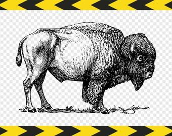 Buffalo Bison print wall art DIY Printable Svg Dxf Pdf Png files