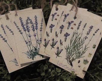 Primitive Garden Herbs Lavender Hang Tags