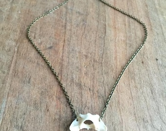 Mink Atlas Vertebrae Necklace - Antique Brass - Ethical - Bone Jewelry - Natural - REAL BONE - Bohemian