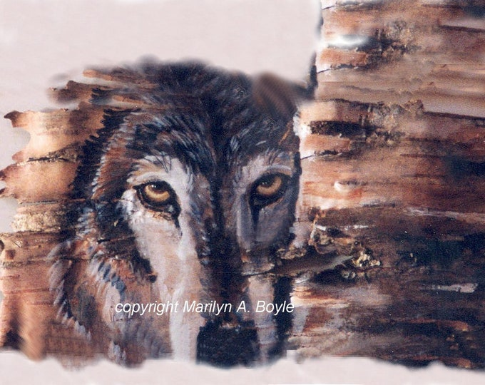 SET of FOUR WOLF Cards; from my original art, blank cards, invitation size, greeting cards, for any occasion