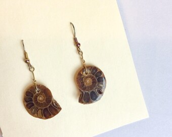 Ammonite Fossil earrings naturalist earrings vintage fossile ammonite earrings natural ammonite earrings nautilis earrings boho earrings boh