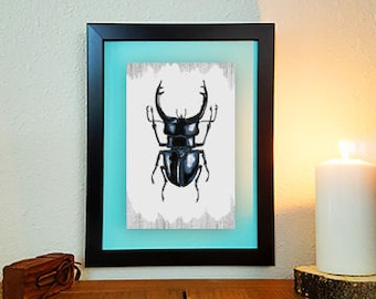 Stag Beetle Art, Stag Beetle Print, Stag Beetle Drawing, Totem Animal, Insect Study, Insect Art, Insect Drawing, Insect Print, High Quality