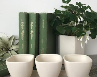 Ceramic Succulent Planter Trio with Tray, Modern Porcelain Design