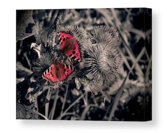 Red Butterflies / wall art canvas print