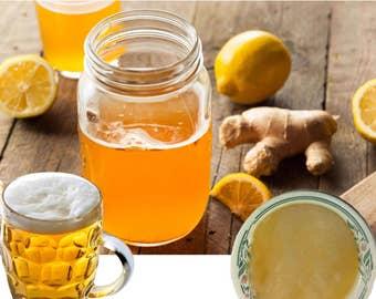 Ginger Beer Plant Culture Starter