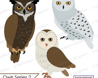Owl Clipart - Instant Download File - Digital Graphics - Crafts, Web Design - Commercial & Personal Use - Wings -#A023