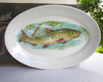 Vintage Rainbow Trout Globe China Platter