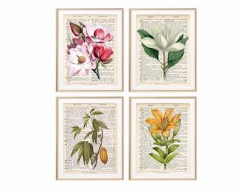 Vintage Botanical Print Set of 4, Dictionary Page Print Floral Artwork, Book pages, Bedroom Art Flower Decor, Bathroom Art, Gift for Her