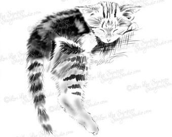 Monochrome Cat Clipart Sketch, Tabby Kitten Art Digital Download, Digital Stamp, Cat Art Drawing Sketch, Cat Illustration (0174c5v)