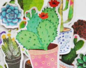 Scrapbook Sticker --Filofax Stickers--Planner Stickers--Cactus and Succulent