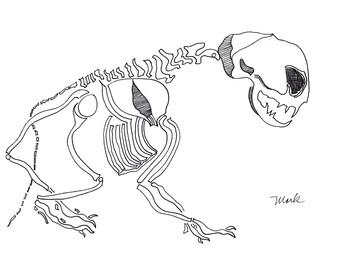 Alien Cat, print on the shop Chiselwit
