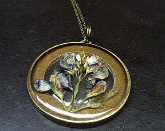 Genuine Texas Blue Bonnet Preserved in Clear Casting Resin, Bronze Chain Necklace.